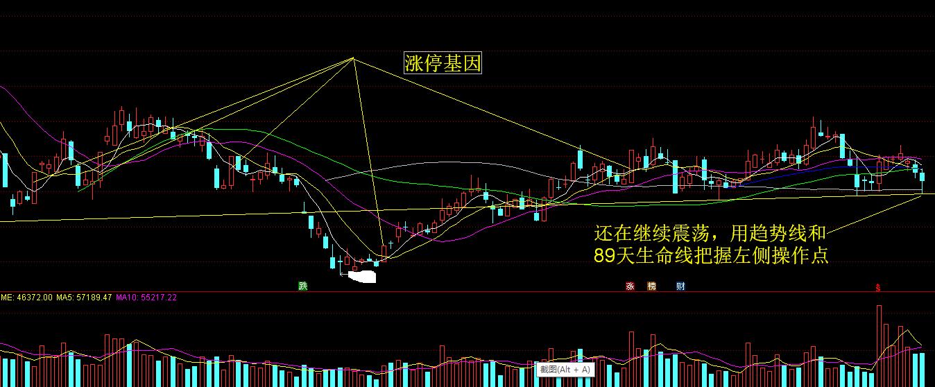 分享直播第001期《近期强势股票形态分析》——胡雪涛