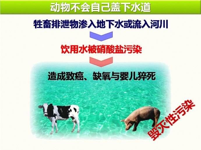 吃素拯救地球2