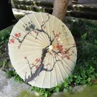 油纸伞,国家非遗文化遗产